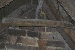 Mould in loft space